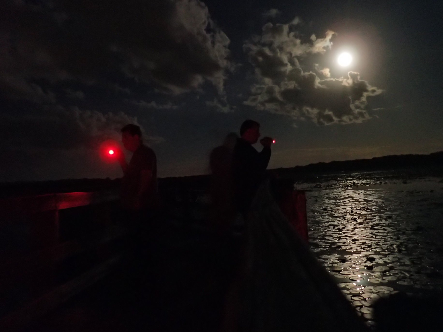 Looking at Crews Lake at night
